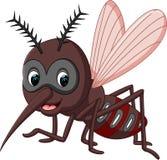 Mosquito cartoon. Illustration of cute mosquito cartoon Stock Images