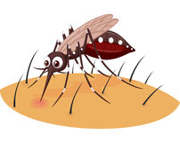 Mosquito cartoon sucking blood from human skin Stock Image