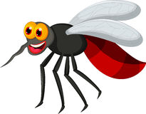 Mosquito cartoon for you design Royalty Free Stock Photography