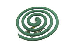 Mosquito Coil Royalty Free Stock Image