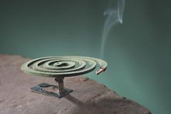 Mosquito coil. Is mosquito-repelling incense, usually shaped into a spiral, and typically made from a dried paste of pyrethrum  powder Royalty Free Stock Images