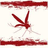 Mosquito Danger Stock Photo