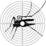 Mosquito del tiroteo de la blanco Fotografía de archivo