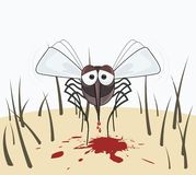 Mosquito drinks the blood of the human skin Royalty Free Stock Photography
