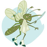 Mosquito el gastrónomo Imagen de archivo