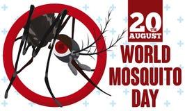 Mosquito fêmea que sai de um anel para o dia do mosquito, ilustração do vetor Fotografia de Stock