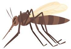 Mosquito flying on white background. Illustration Royalty Free Stock Photo