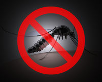 Mosquito with forbidden sign on dark background Royalty Free Stock Photo