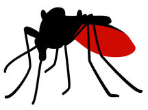 Mosquito full of blood Royalty Free Stock Photography