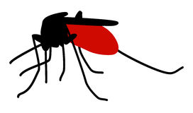 Mosquito full of blood Royalty Free Stock Photos