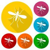 Mosquito icons set with long shadow Stock Photo