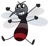 A mosquito Stock Images