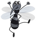 A Mosquito Royalty Free Stock Photo