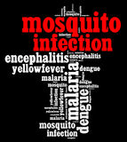 Mosquito infection diseases info text. Graphics and arrangement Royalty Free Stock Photo