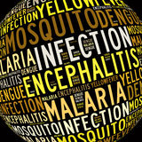 Mosquito infection diseases info text. Graphics and arrangement Stock Image