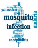 Mosquito infection diseases info text. Graphics and arrangement Stock Images