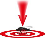 The mosquito is killed, the harmful insect, Royalty Free Stock Image