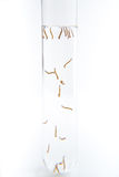 Mosquito larvae in a test tube royalty free stock image