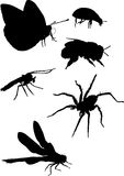 Mosquito and other insect silhouettes Stock Photography