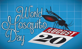 Mosquito Posed in a Loose-leaf Calendar Commemorating World Mosquito Day, Vector Illustration. Banner with dark mosquito posed over a loose-leaf calendar with Stock Photo