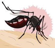 Mosquito que muerde a una persona, ejemplo del vector Foto de archivo libre de regalías