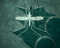 Mosquito silhouette on concrete textured surface Royalty Free Stock Photo