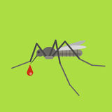 Mosquito vector illustration. Gnat with blood. Mosquito sucks th Stock Photos