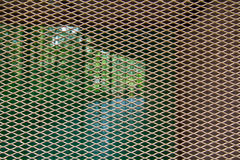 Mosquito wire screen Stock Photography