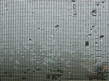 Mosquito wire screen on winter raining background royalty free stock photos