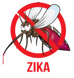 Mosquito zika. Cartoon isolated on white Royalty Free Stock Image