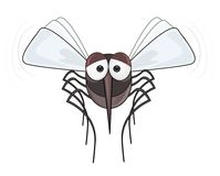 Mosquitoes - STOP mosquito Stock Photo