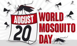 Mosquitoes Swarm and Loose-Leaf Calendar for World Mosquito Day, Vector Illustration Stock Photos