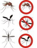 Mosquitos Royalty Free Stock Photos
