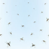 Mosquitos Seamless border. Royalty Free Stock Photography