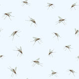 Mosquitos Seamless Pattern. Insect. Royalty Free Stock Photos