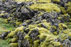 Moss on basaltic rocks Stock Photo