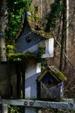 Moss on Birdhouses. Moss growing on a trio of weathered birdhouses Stock Photography