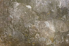 Moss Cement fotografie stock libere da diritti