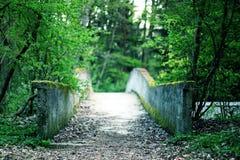 Moss concrete bridge through Forrest. Mystic moss covered concrete bridge through Forrest Royalty Free Stock Photo