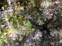 Moss Coral Stock Images