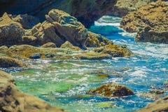 Moss Cove Laguna Beach Arkivfoto