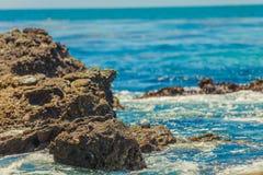 Moss Cove Laguna Beach Arkivbilder