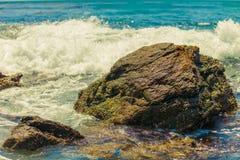 Moss Cove Laguna Beach Royaltyfria Foton