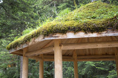 Moss cover the roof of pavillion Royalty Free Stock Photography