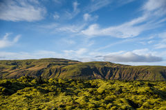 Moss cover on volcanic landscape of Iceland Stock Photography