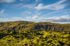 Moss cover on volcanic landscape of Iceland. Eldhraun lava field (moss cover on lava rock) and mountain, beautiful volcanic landscape of Iceland Royalty Free Stock Image