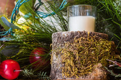 Moss covered candle holder with lights Royalty Free Stock Image