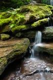 Moss Covered Cascade. A moss covered cascade along a Pennsylvania creek Stock Photo