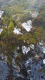 Moss covered cliff face Stock Images