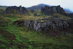 Moss covered cliffs Stock Images